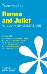 Hamlet theme of madness essay